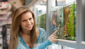 Woman chooses  fish tank in pet-shop