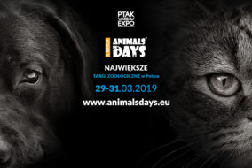 AD 20192 284x190 - KAKADU zaprasza na Animals' Days 2019