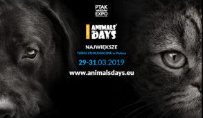 AD 20192 293x170 - KAKADU zaprasza na Animals' Days 2019